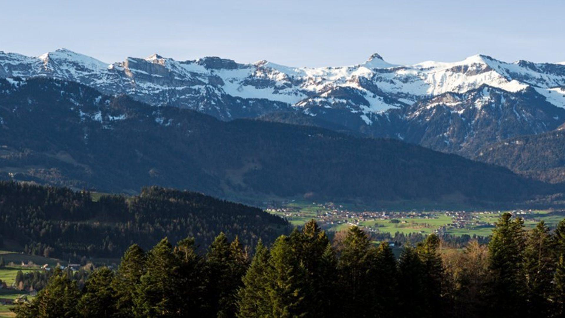 Blick in die Alpen von Leutkirch aus