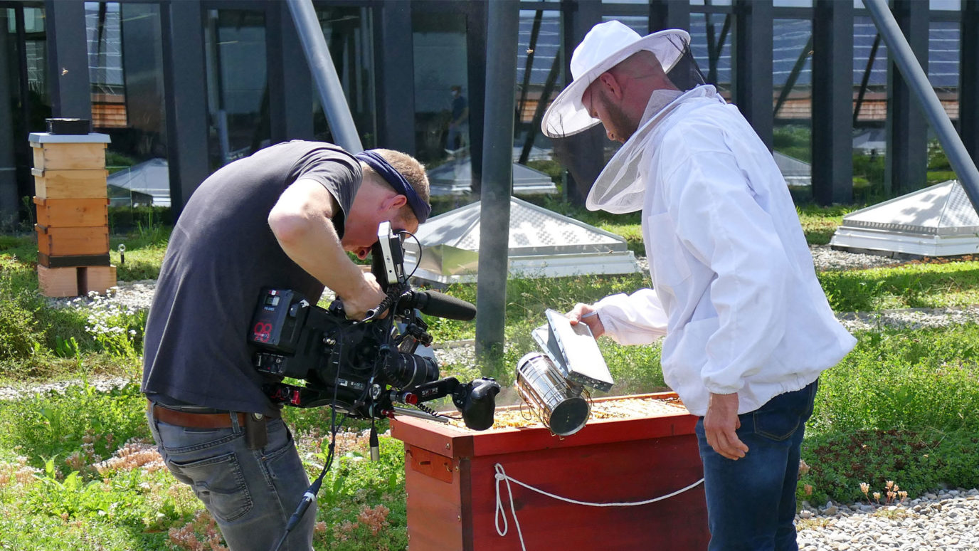 Kamerateam von arte bei elobau beim Filmen der Bienen