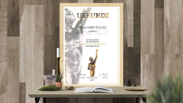 Urkunde über erreichen der Jurystufe beim grossen Preis des Mittelstands
